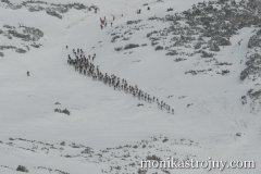 alpin-sport-mmale-strojny-035_resize.jpg