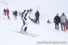 alpin-sport-mmale-strojny-147_resize.jpg